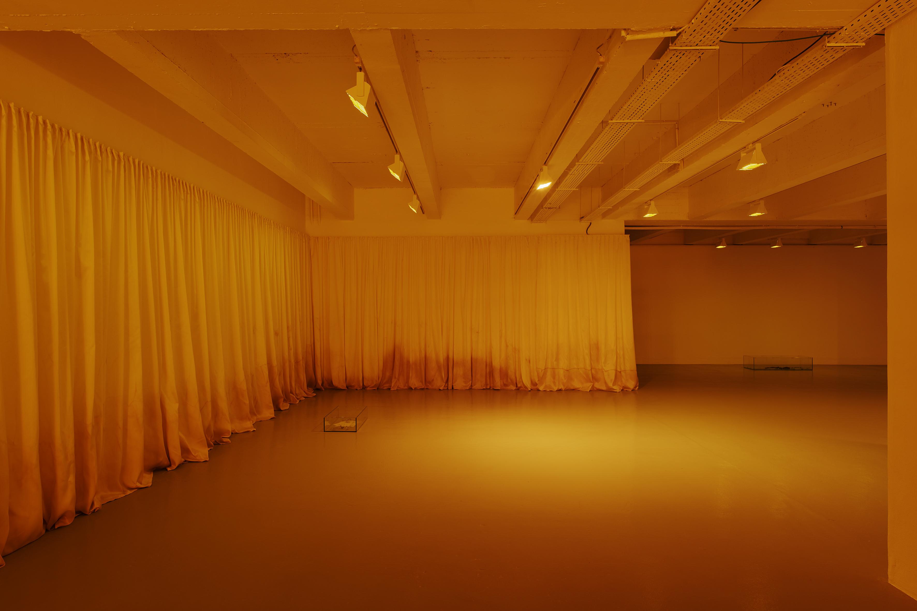 BR 2018-Galerie Art et Essais-005