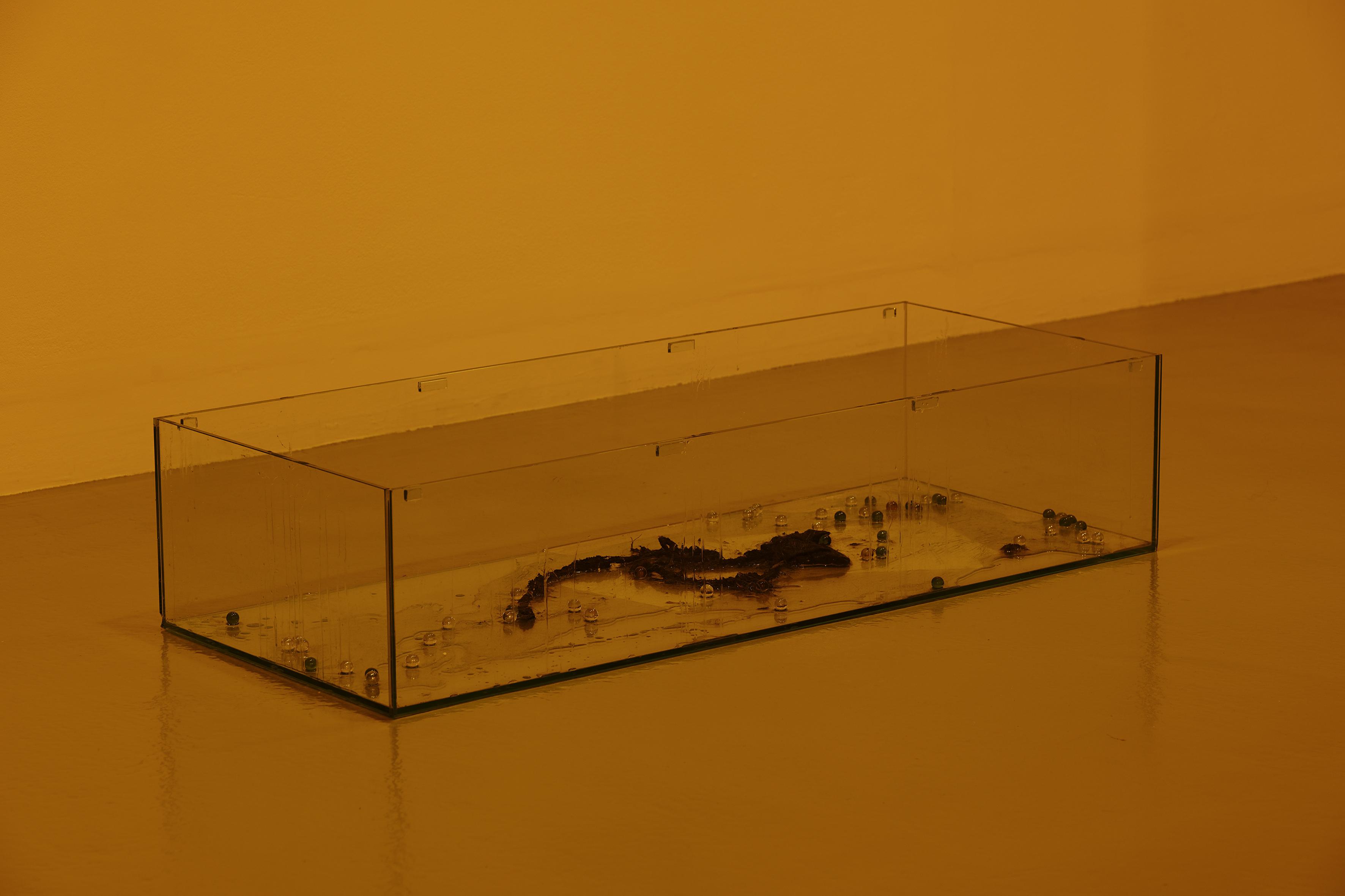 BR 2018-Galerie Art et Essais-023