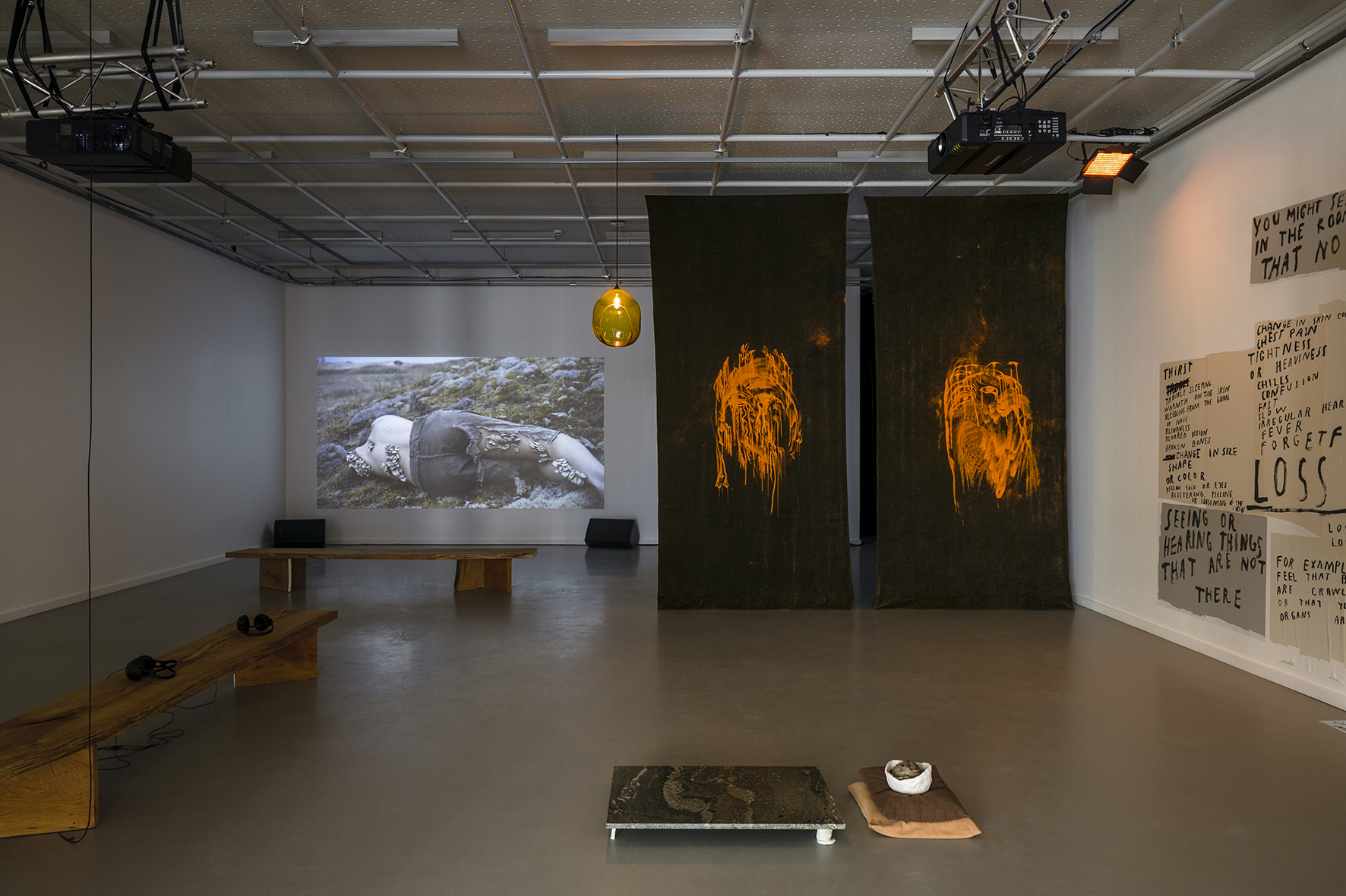 Spectral Forest_Nida Art Colony_4Cs_Curator_Rado_Istok_Photo_Ansis_Starks_5_LOW